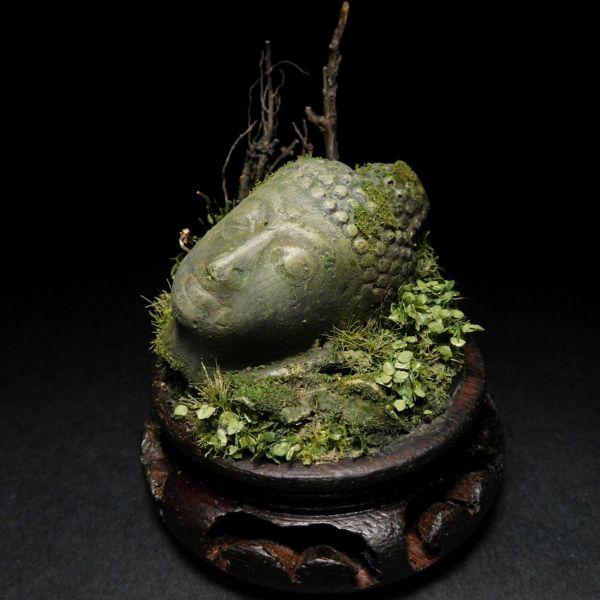 PTX157 Buddha-head S