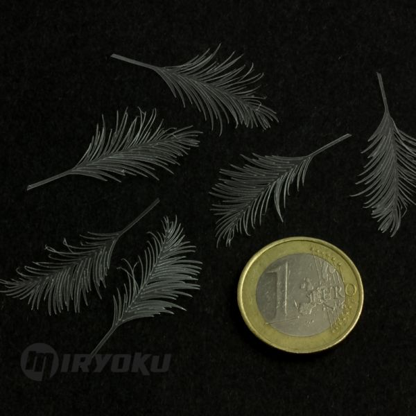 <p>This set contains 7 palm leaves, precision-cut from strong and flexible, transparent foil.<br />