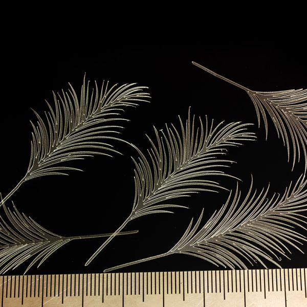 <p>This set contains 7 ultra-thin palm leaves, precision-cut from ultra-thin yet strong and&nbsp;flexible foil.<br />